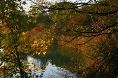 Erinnerungen an den Herbst...