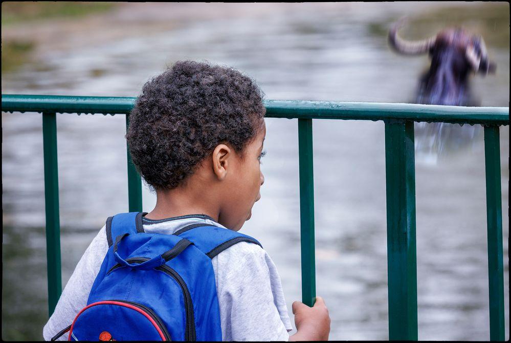 Erlebnis im Tiergarten Schönbrunn