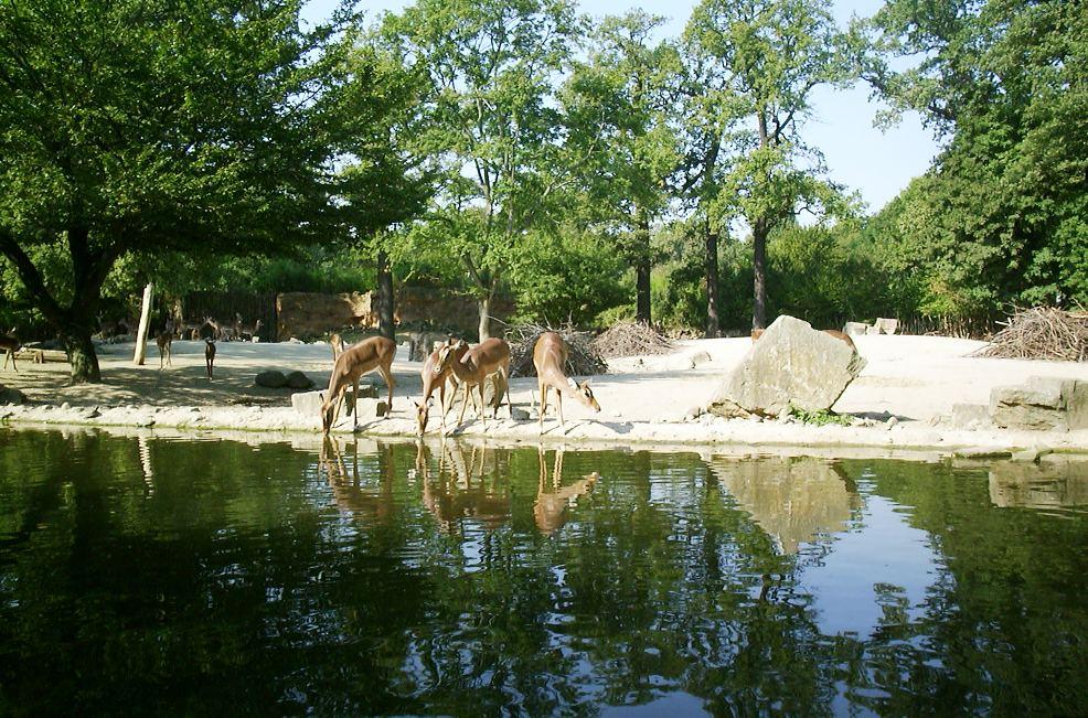 Erlebnis-Zoo-Hannover
