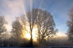 Erleuchtung am Morgen