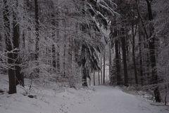 Erst Reif, dann Schnee, heut Reif und Schnee