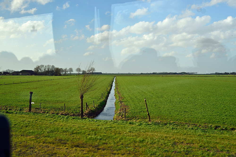 Erste Bilder der Holländischen-Landschaft