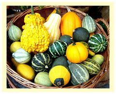 Erste Herbstvorboten