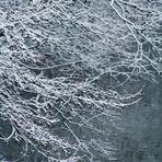 erste zarte Winterspuren