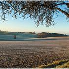 erster Morgenfrost