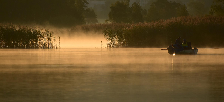 Erster Nebel...