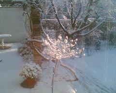 Erster Schnee !