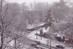 Erster Schnee in 2018 (1)