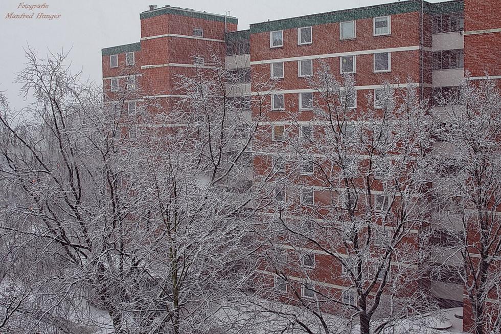 Erster Schnee in 2018 (4)