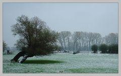 Erster Wintertag am Niederrhein