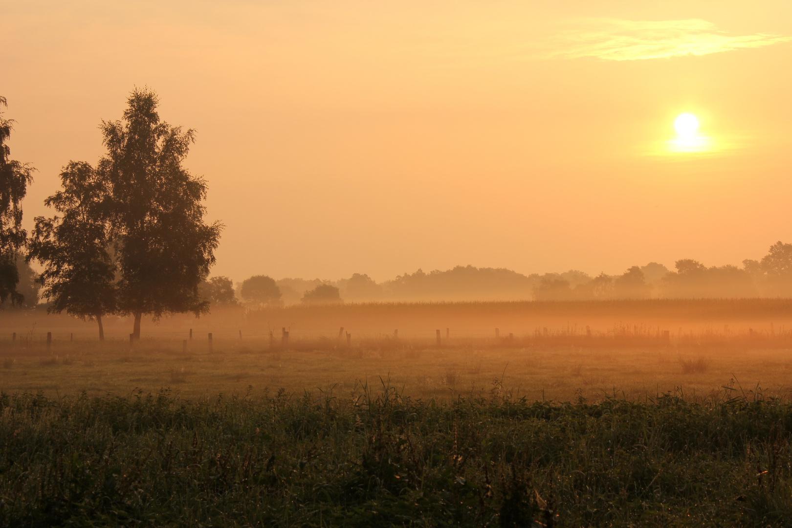 Erwachen am Morgen