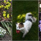 Erwachender Frühling