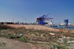 Erweiterung des Containerterminals Tollerort