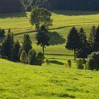 Erzgebirge im September
