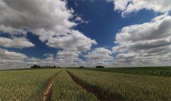 Erzgebirgsfelder