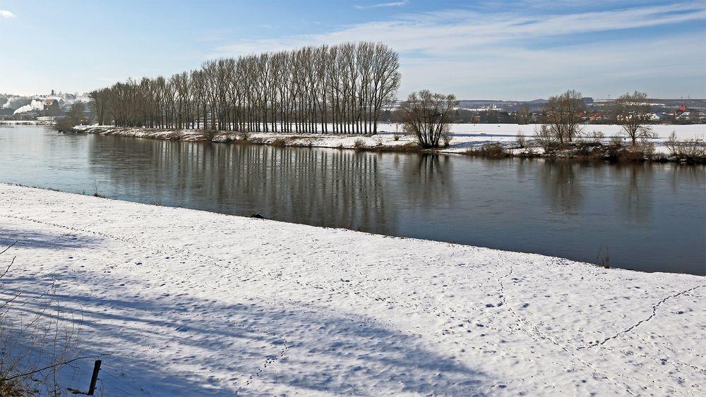 Erzwungen habe ich diesen Blick an der Elbe...