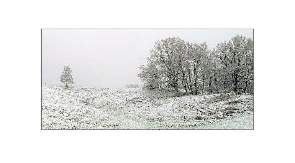 Es fiel nochmal Schnee