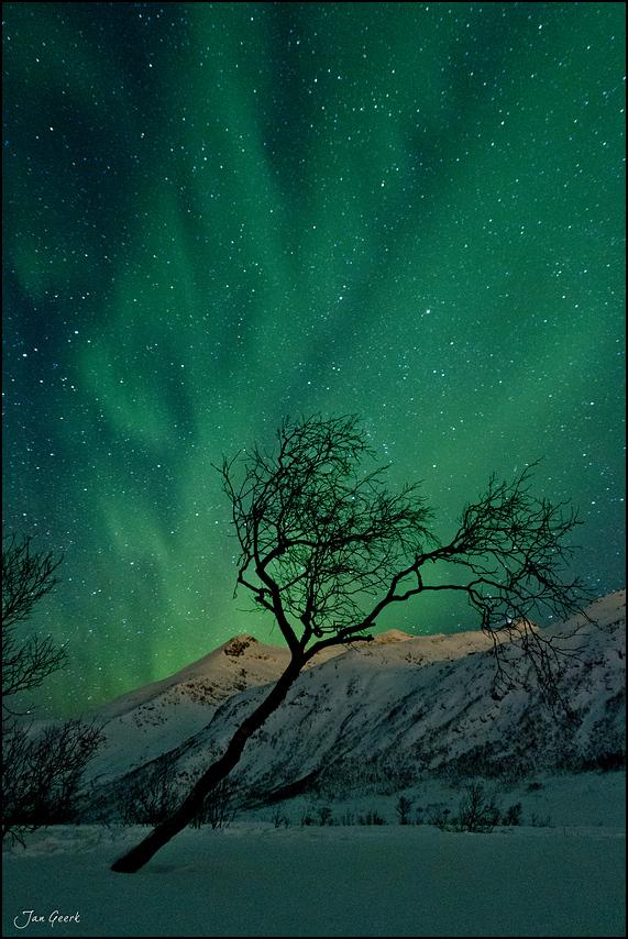 es gr nt so gr n foto bild opt ph nomene der atmosph re himmel universum skandinavien. Black Bedroom Furniture Sets. Home Design Ideas