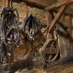 Es hängt ein Pferdehalfter an der Wand....