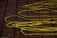 Es ist wichtig immer die richtige Strippe zu ziehen, das macht Seilschaften aus.##2018##