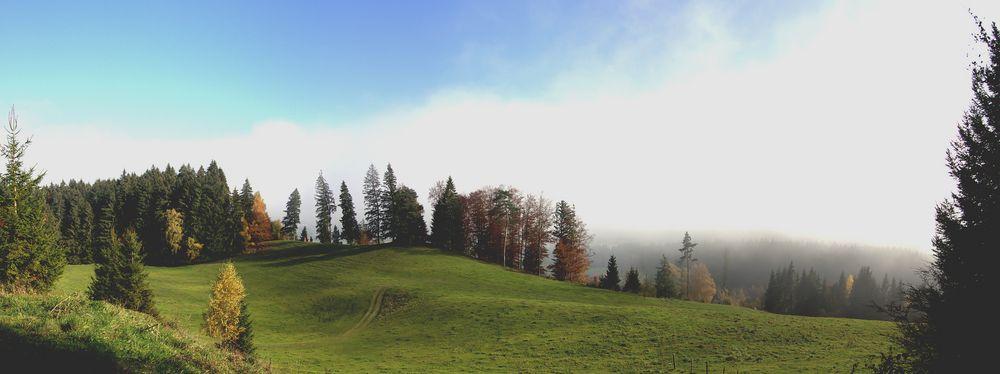 Es kommt Nebel auf