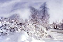 Es kommt Schnee