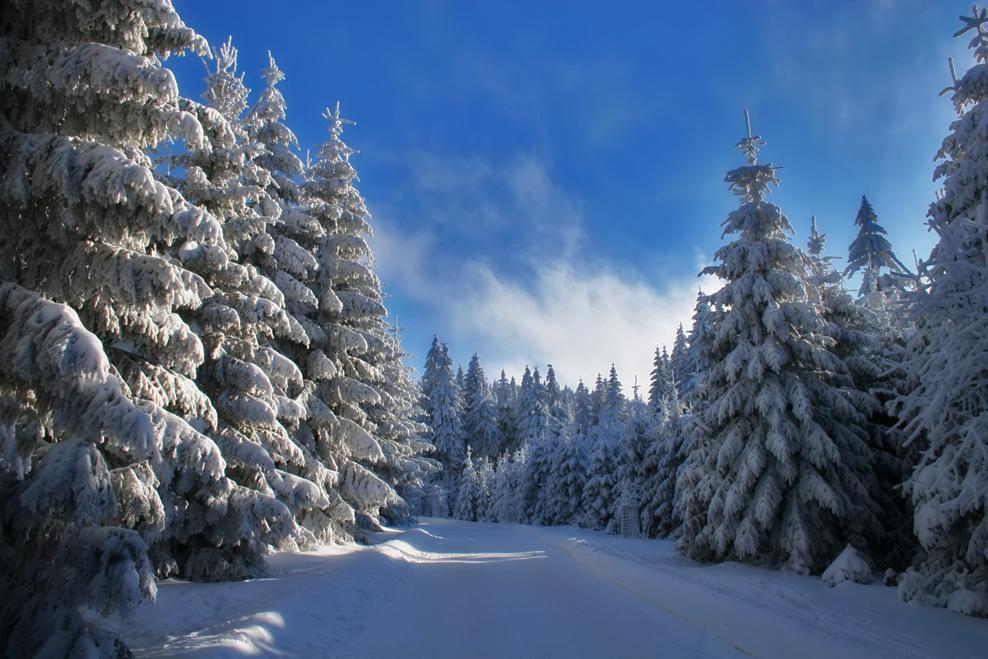 Es riecht nach Schnee...