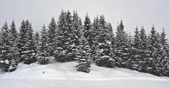 Es schneit in den Bergen. - Il neige à la montagne!