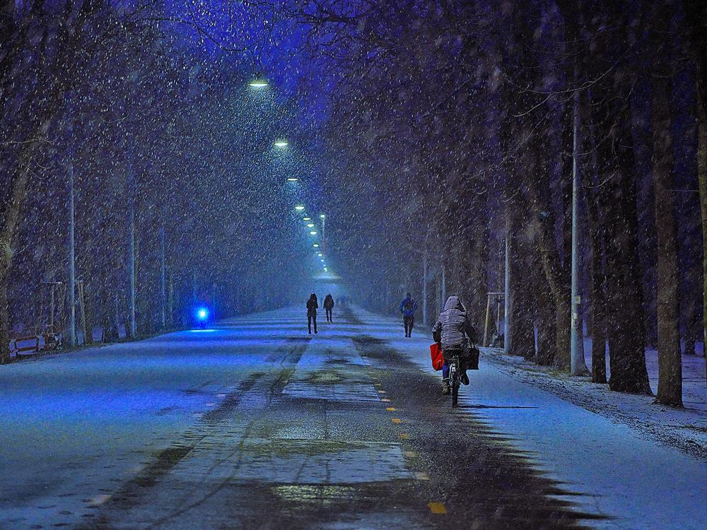 Es schneit in Wien .
