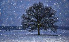 es-schneit-tirol