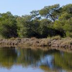 Es Trenc, Naturschutzgebiet 1