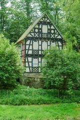 . . . es war einmal im Wohnrother Bachtal VII . . .
