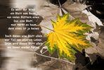 Es weht der Wind ein Blatt vom Baum....