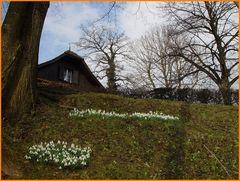 Es werde Frühling!