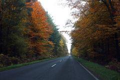 Es wird Herbst... #3