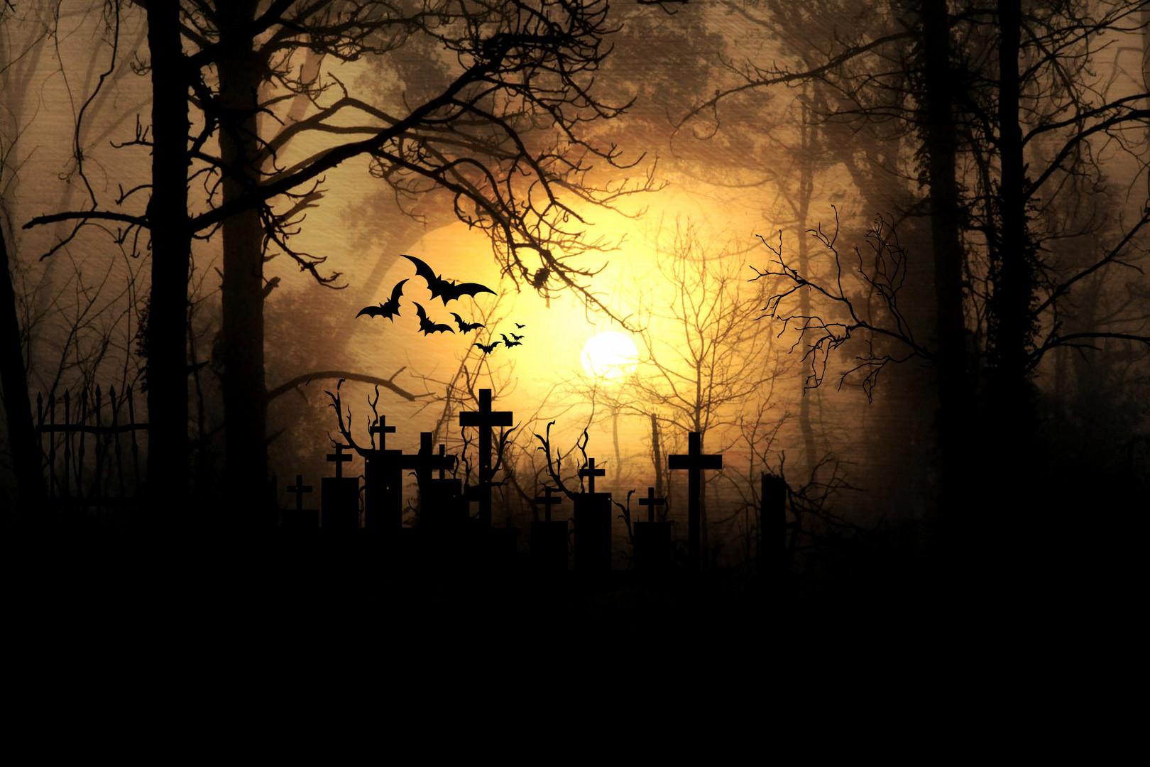 Es wird Nacht im Geisterwald