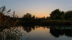 es wird ruhig am Teich