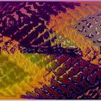 Escamas en colores