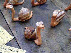 escargots cévenols .....