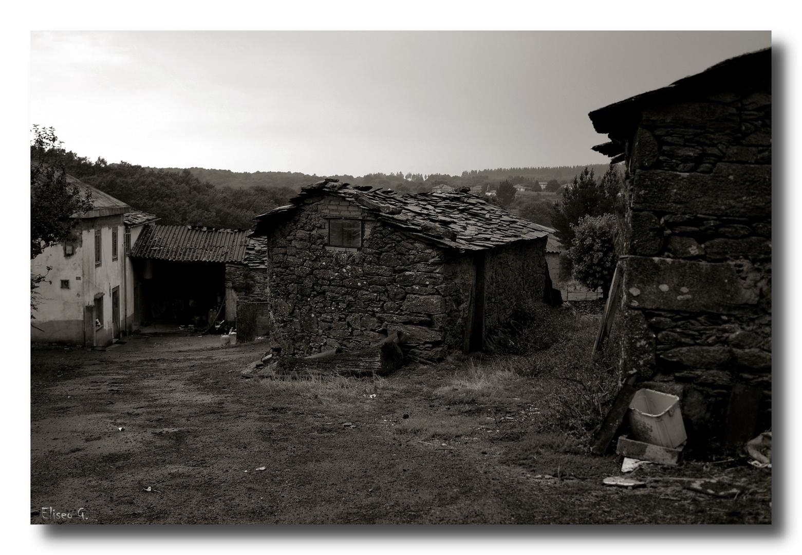 Escena del camino - día gris -
