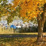 Eschwege - Herbst an der Werra