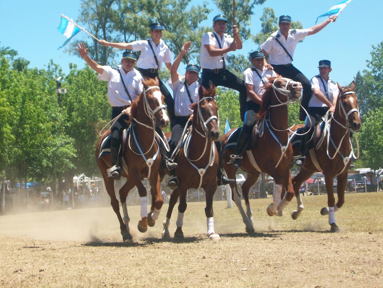 ESCUADRA AZUL POLICIA FEDERAL
