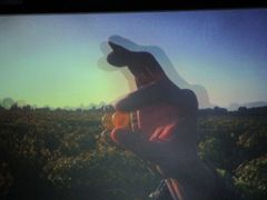Essai de photo d'un film en 3 D, Grain de Sancerre..
