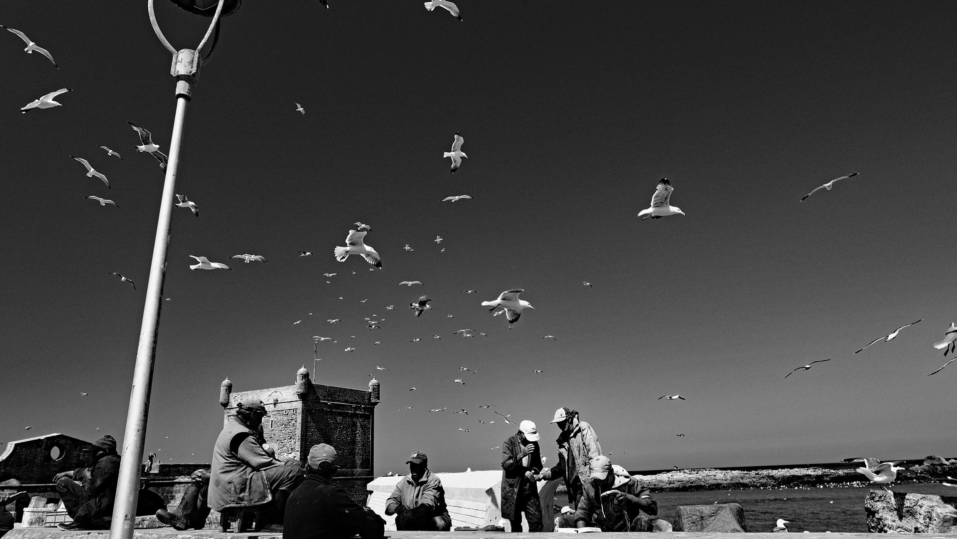 EssaouiraBW1