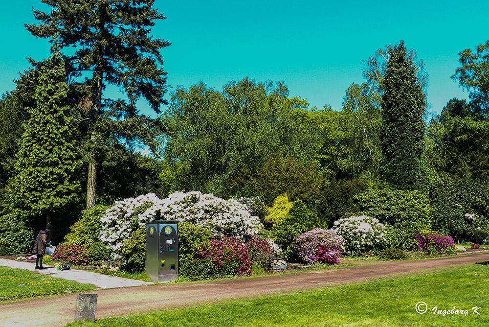 Essen-Bredeney - Städt Friedhof im Frühling