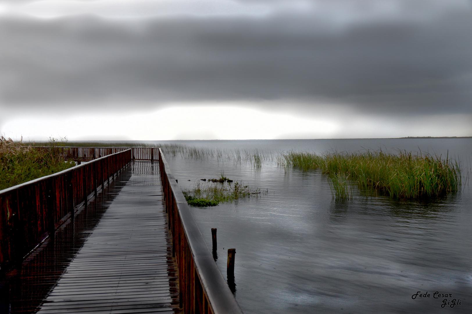 Esteros del ibera, Corrientes. AR