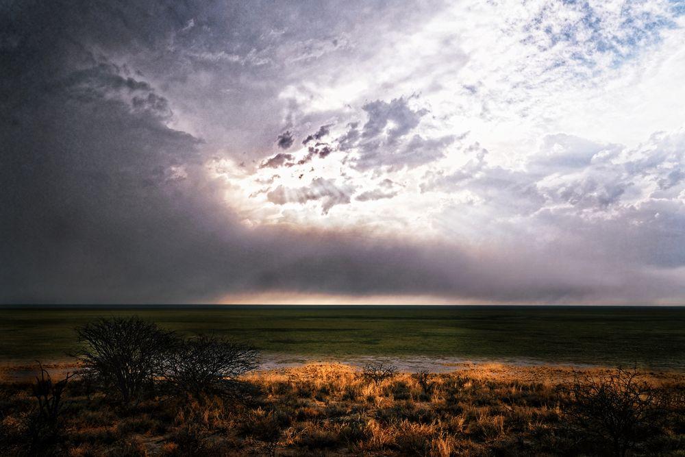 Etosha-Park, Namibia