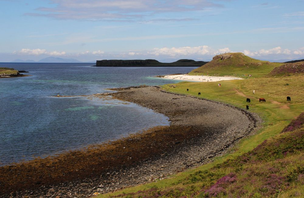 Etwas Südsee gefällig? Dann ab nach Schottland!
