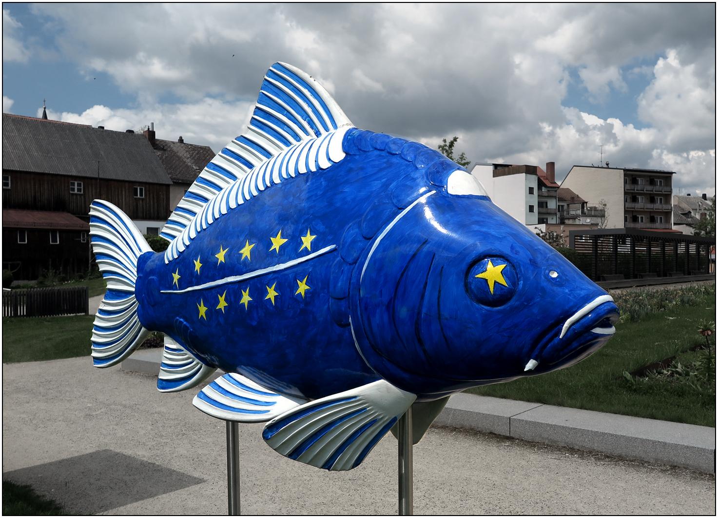 Europafisch - Tirschenreuth - Oberpfalz