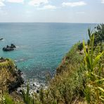 europe's only beachfront banana plantation